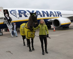 Ryanair Large